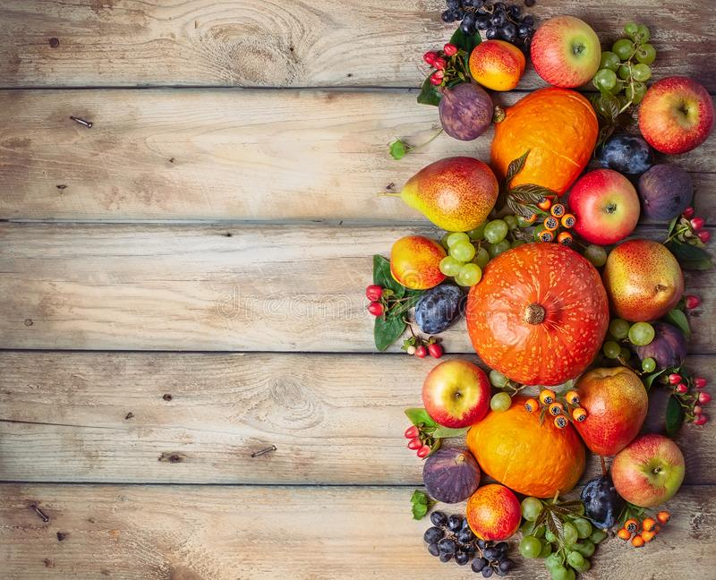 Thanksgiving background with autumn pumpkins, fruits and flowers royalty free stock image