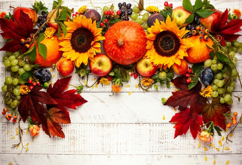 Thanksgiving background with autumn pumpkins, fruits and flowers stock photography