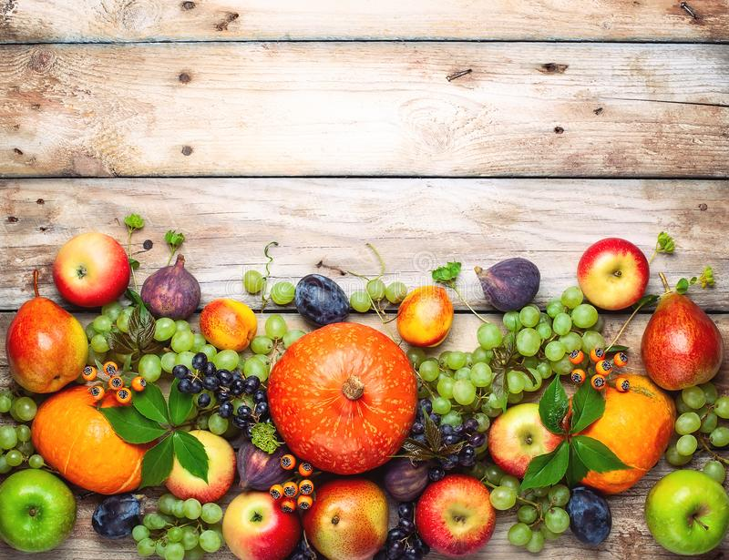 Thanksgiving background with autumn pumpkins, fruits and flowers royalty free stock images