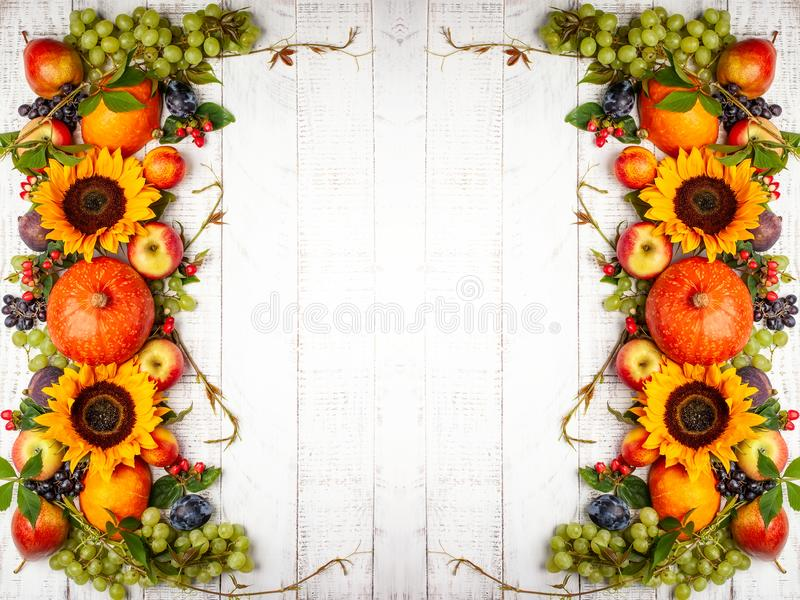 Thanksgiving background with autumn pumpkins, fruits. stock photography