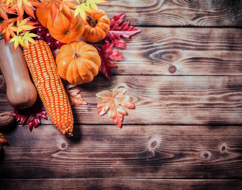 Thanksgiving background with fruit and vegetable on wood in autumn and Fall harvest season royalty free stock photo