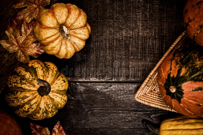 Thanksgiving background with fruit and vegetable on wood in autumn and Fall harvest season. royalty free stock photo