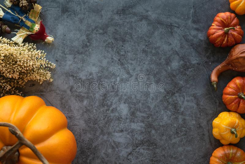 Thanksgiving background with pumpkins, flowers and scarecrow on a grey cement background. Copy space for your text stock photography