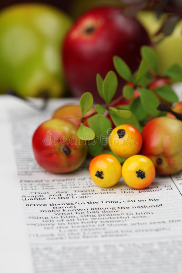 Thanksgiving Bible. Thanksgiving arrangement with the Bible open at 1 Chronicles 16:8 stock image