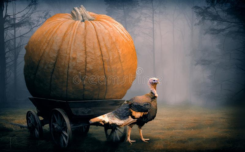 Thanksgiving Day background with turkey and pumpkin royalty free stock images