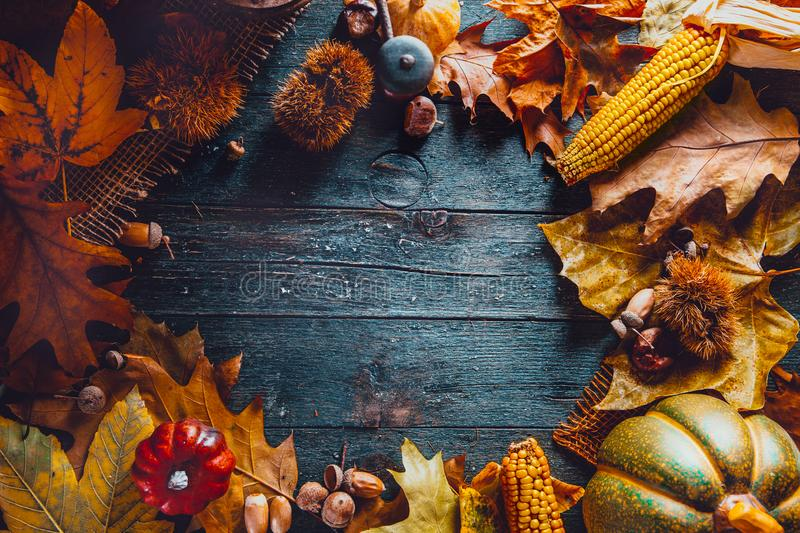 Thanksgiving day dinner with dried leaves and old board stock image