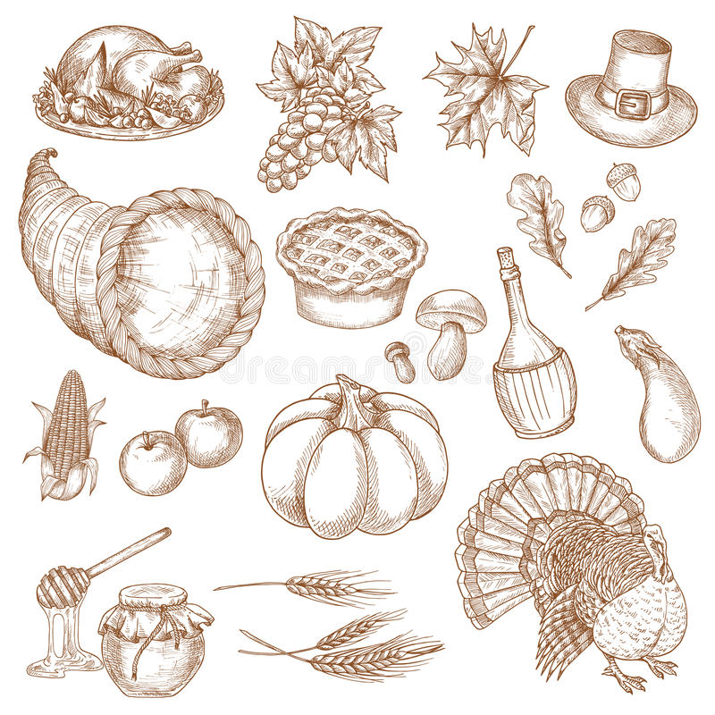 Thanksgiving day sketched symbols for greeting vector illustration