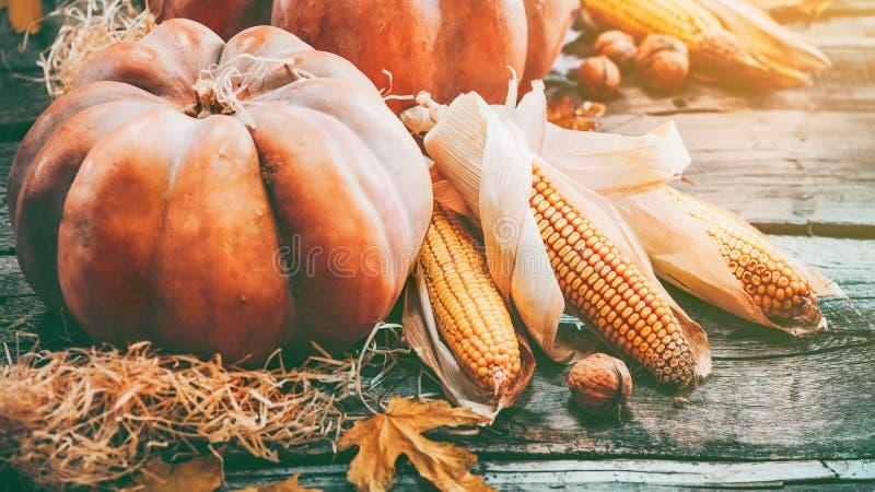 Thanksgiving dayachtergrond Oranje Pompoenen stock foto