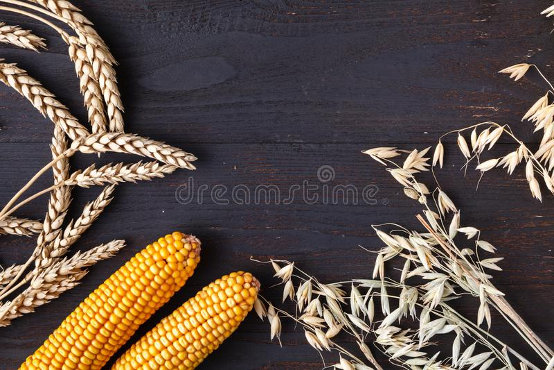 Thanksgiving dayconcept - grens of kader met oranje pompoenen en kleurrijke bladeren op houten achtergrond royalty-vrije stock afbeeldingen