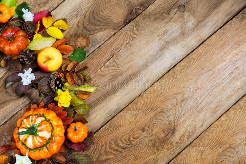 Thanksgiving decorative pumpkins, fall leaves arrangement, copy. Thanksgiving decorative pumpkins, apples, colorful fall leaves, yellow roses and white flower royalty free stock photo