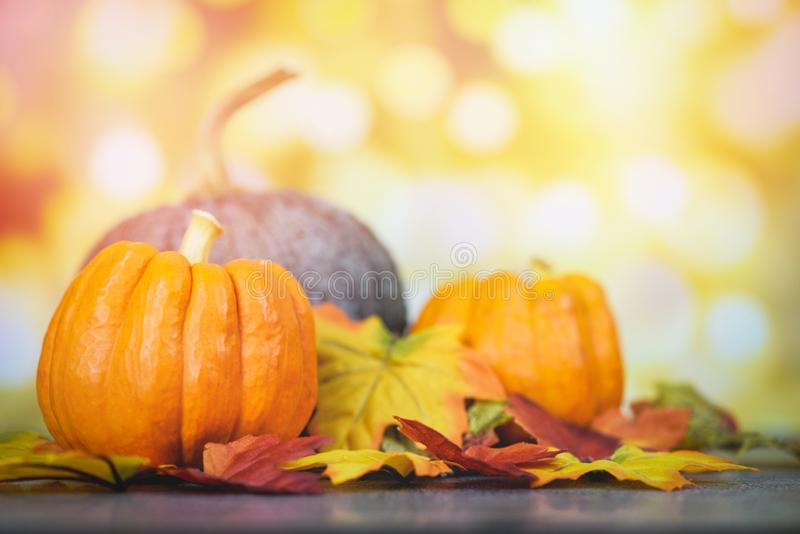 Thanksgiving dinner and autumn decoration and light background festive bokeh - Autumn table setting with pumpkins holiday stock photography