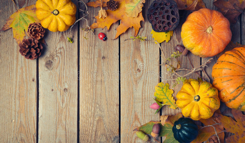 Thanksgiving dinner background. Autumn pumpkin and fall leaves on wooden table stock photography