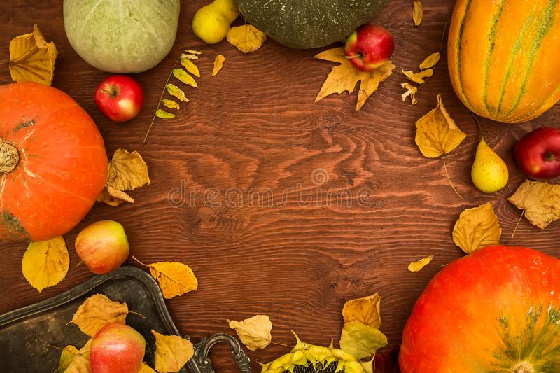 Thanksgiving dinner. Fruit and vegetables with plate on wooden table. Thanksgiving autumn background. Flat lay, top view stock images