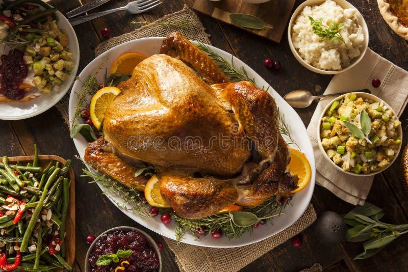Thanksgiving fait maison entier Turquie photographie stock