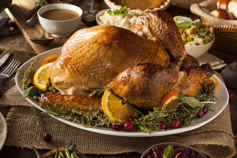 Thanksgiving fait maison entier Turquie image stock
