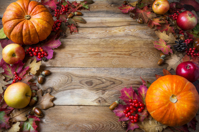 Thanksgiving or fall concept with pumpkins and apples, copy space stock photography