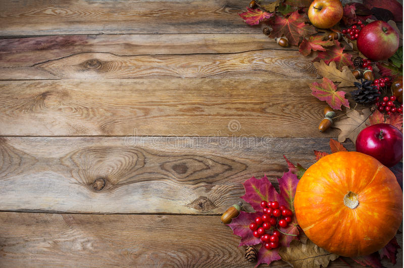 Thanksgiving or fall greeting background with pumpkins and fall royalty free stock images