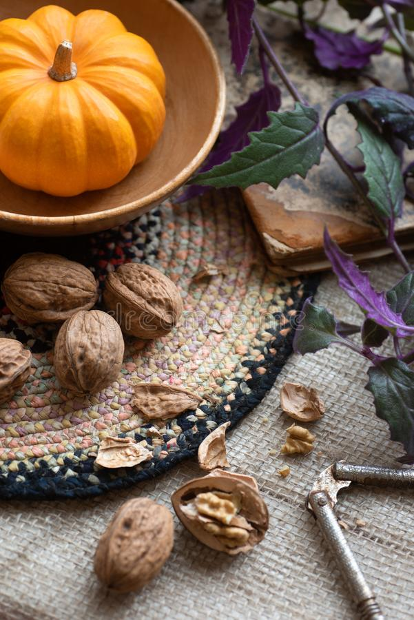Thanksgiving Fall Still Life with Mini Pumpkin, walnuts and plant as centerpiece on a table with textured fabric tablecloth with c stock photos