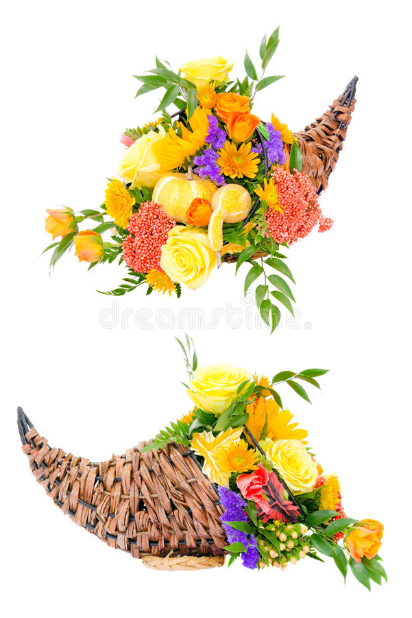 Thanksgiving flower arrangement in cornucopia royalty free stock photo