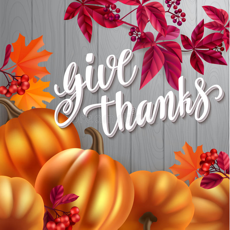 Thanksgiving greeting card. Handwritten brush calligraphy and autumn leaves, berries and pumpkins. royalty free illustration