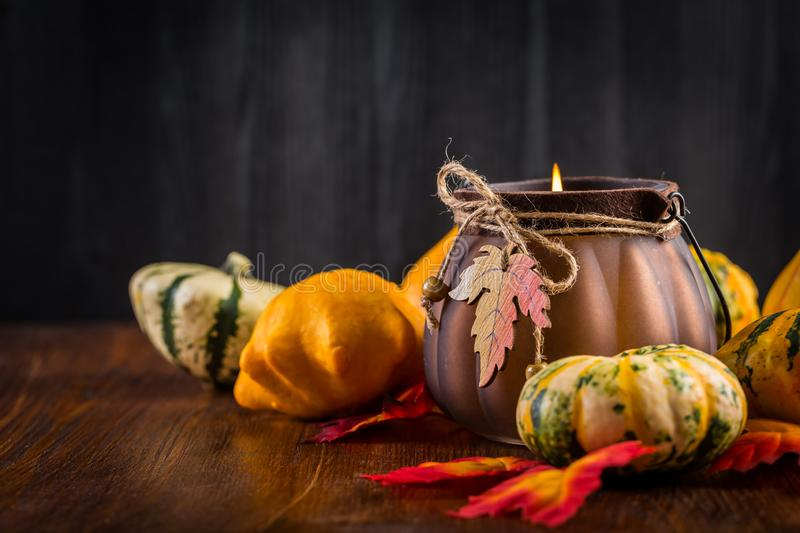 Thanksgiving and Halloween still life with pumpkins royalty free stock photo