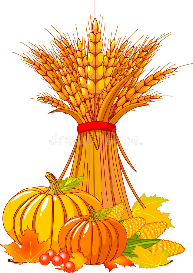 Free Thanksgiving / Harvest Background Royalty Free Stock Images - 15726179