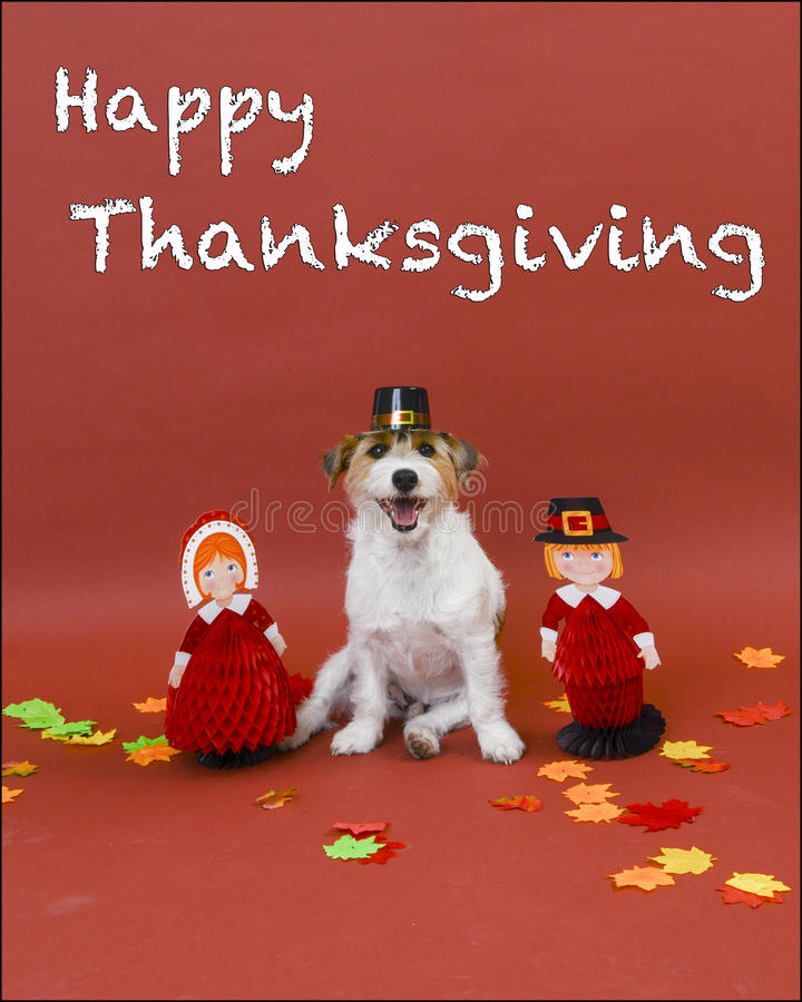 Thanksgiving heureux image stock