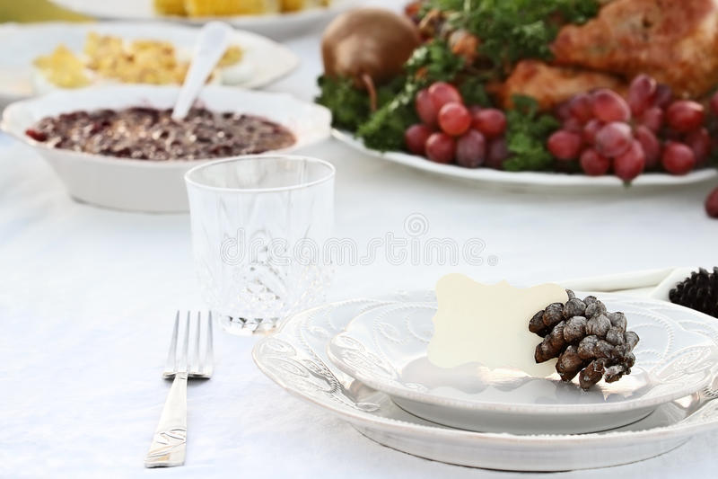 Thanksgiving Meal royalty free stock photo
