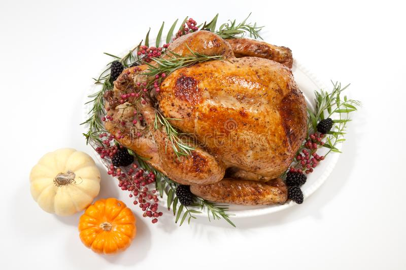 Thanksgiving turkey on white stock photo image of nobody cooked thanksgiving pepper roasted turkey garnished with blackberry pink peppercorn and mini pumpkins on white publicscrutiny Image collections