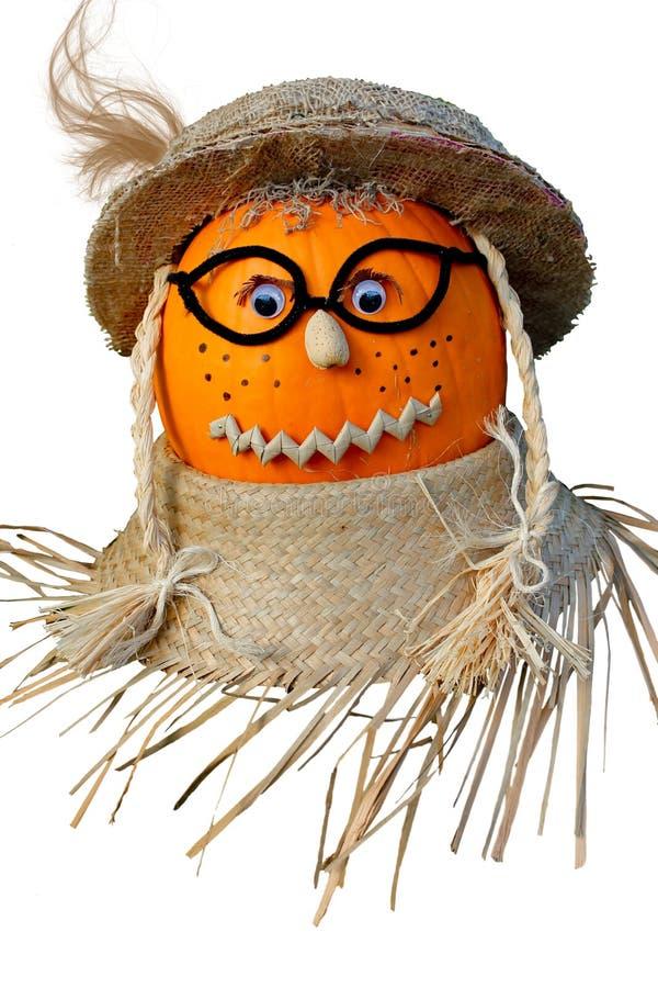 Free Thanksgiving Pumpkin. Royalty Free Stock Images - 26693979