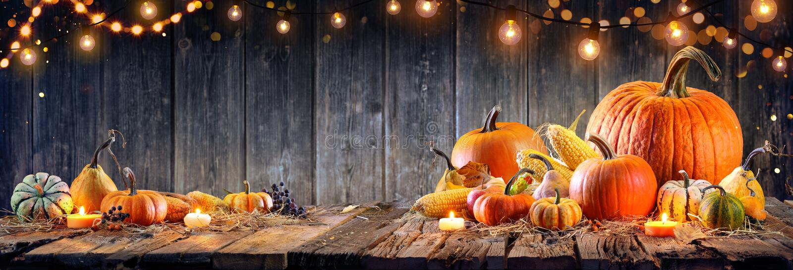 Thanksgiving - Pumpkins And Corncobs royalty free stock photos