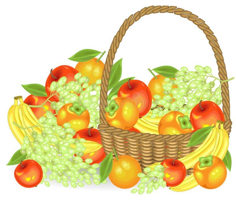 thanksgiving Sammelte eine gro?z?gige Ernte im Korb sind ?pfel, Bananen, Trauben, Persimonen und Orangen Frisches sch?nes stock abbildung