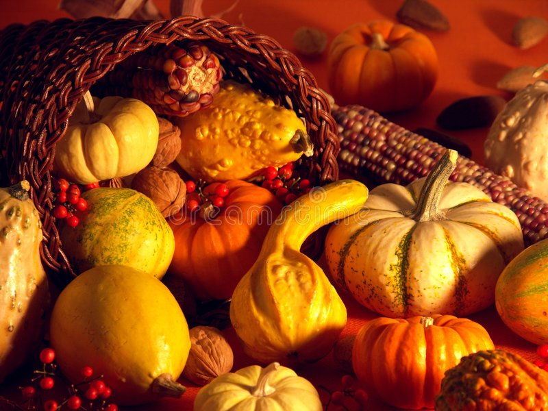 Download Thanksgiving Scene 1 stock photo. Image of corn, holidays - 1589416