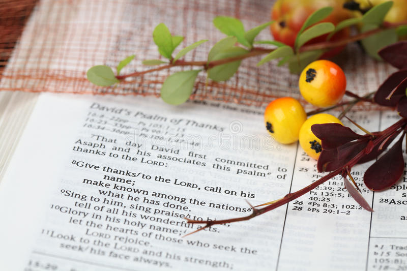 Thanksgiving Scripture. Thanksgiving arrangement with the Bible open at 1 Chronicles 16:8 royalty free stock photos