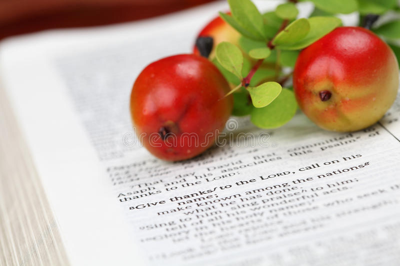 Thanksgiving Scripture. Thanksgiving arrangement with the Bible open to 1 Chronicles 16:8 stock photos