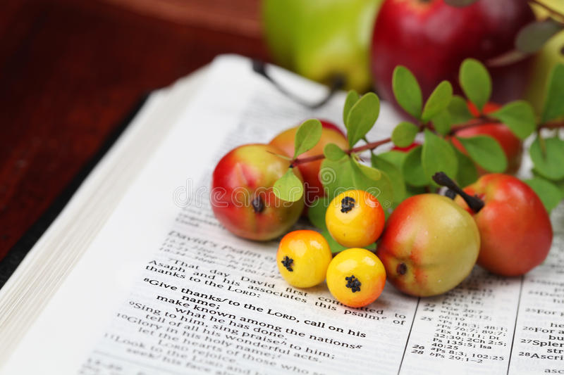 Thanksgiving Scripture. Thanksgiving arrangement with the Bible open to 1 Chronicles 16:8 royalty free stock photo