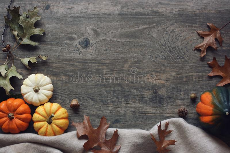 Thanksgiving season still life with colorful small pumpkins, acorn squash, soft blanket and fall leaves over rustic wood backgroun royalty free stock photos
