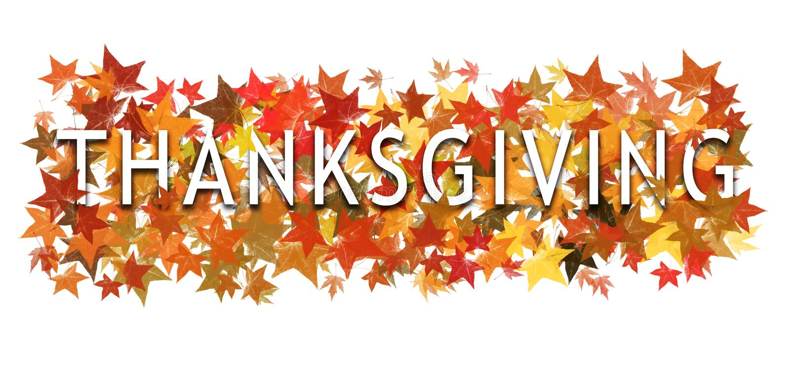 Thanksgiving text, word wrapped in and layered with autumnal leaves. Isolated on white. stock photography