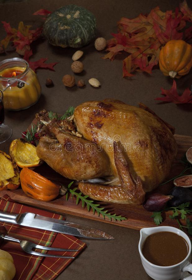 Thanksgiving Traditional Roasted Turkey. Garnished traditional roasted turkey for Thanksgiving, garnished with roasted winter squash, cranberry, nuts, and fresh royalty free stock images