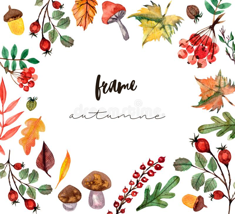 Thanksgiving watercolor illustration. Wreath, garland, circle of autumn flowers, herbs and leaves royalty free illustration