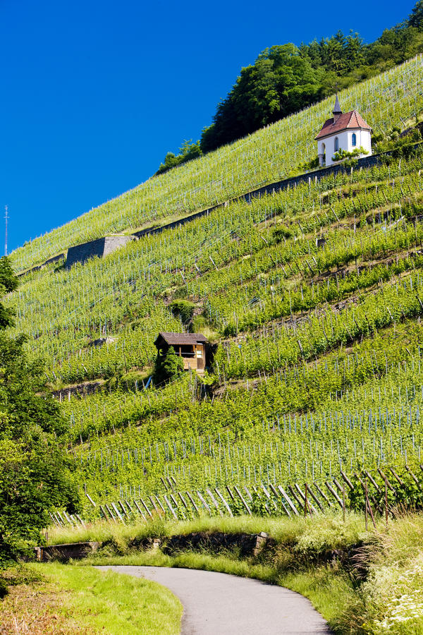 Download Thann stock image. Image of travelling, rhin, grand, crus - 13489765