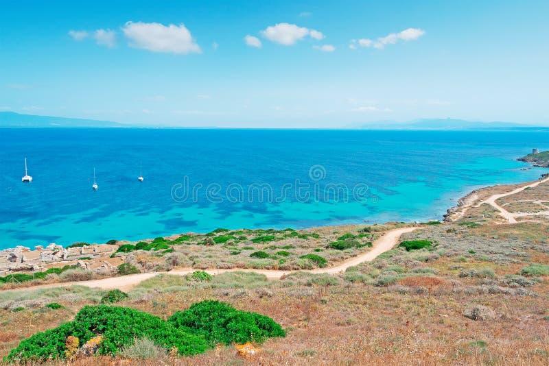 Tharros海岸线 库存照片