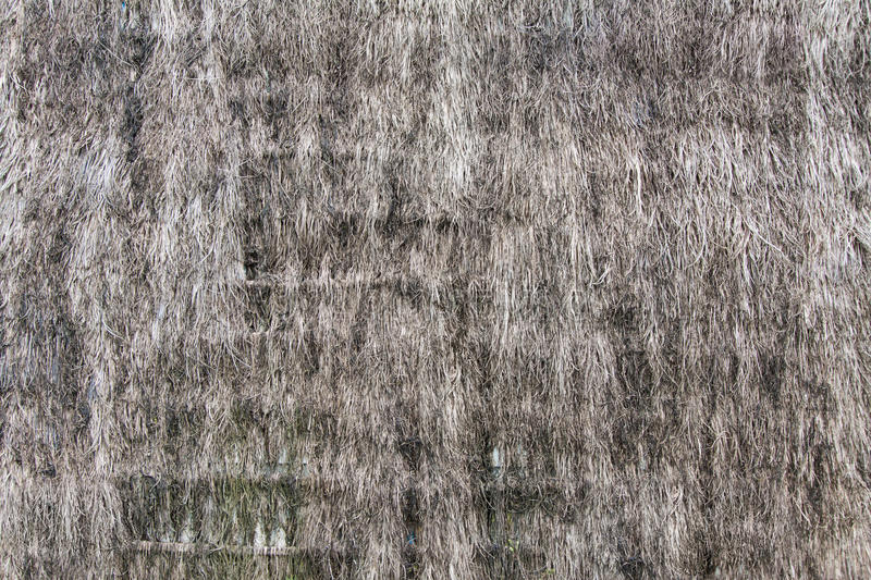 Thatch background. Old thatch background backdrop details straw stock photos