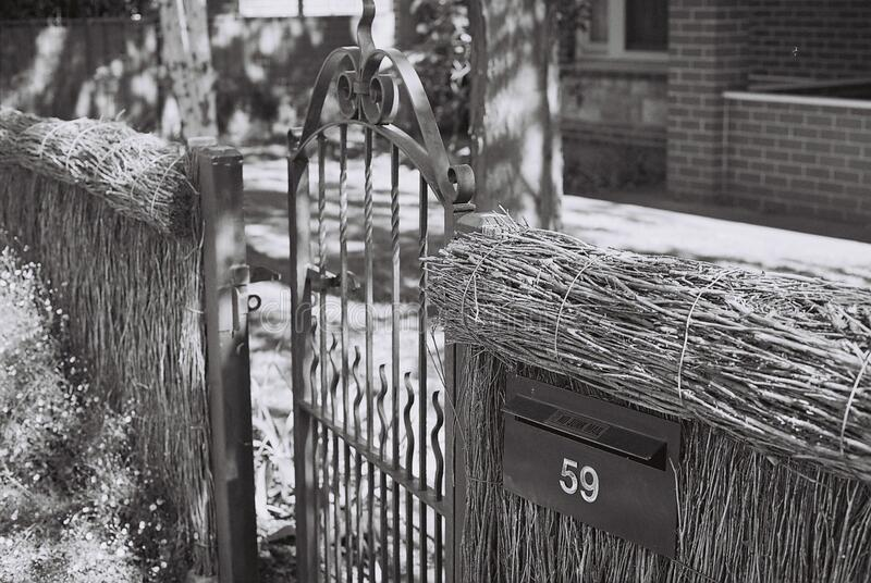 Thatch fence and gate stock image