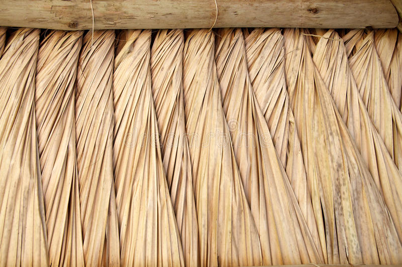 Thatch hut roof. Interior view of a thatch hut roof stock images