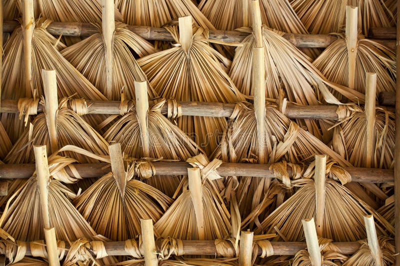 Thatch in Latin America. Primitive thatch of palm leaves in hot countries of South America royalty free stock photo