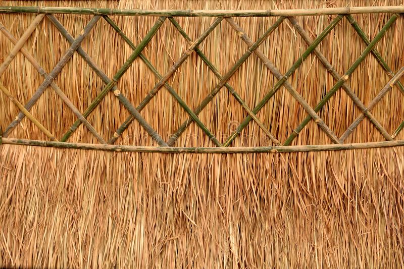 Download Thatch roof stock photo. Image of backdrop, native, rural - 25207244