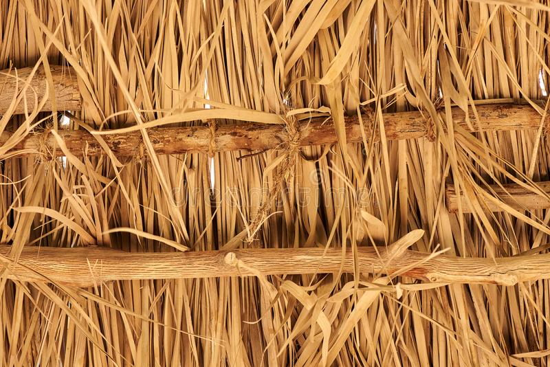 Thatch roof for background stock image