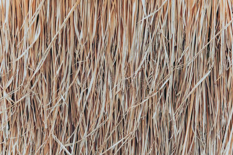 Thatch roof background, hay or dry grass background. A thatched roof, hay or dry grass background. Grass hay, roof texture. Dry straw, roof background texture stock photos