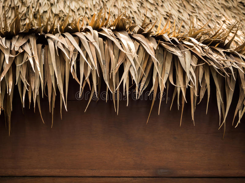 Thatch roof background stock image